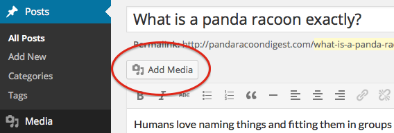Add Media button