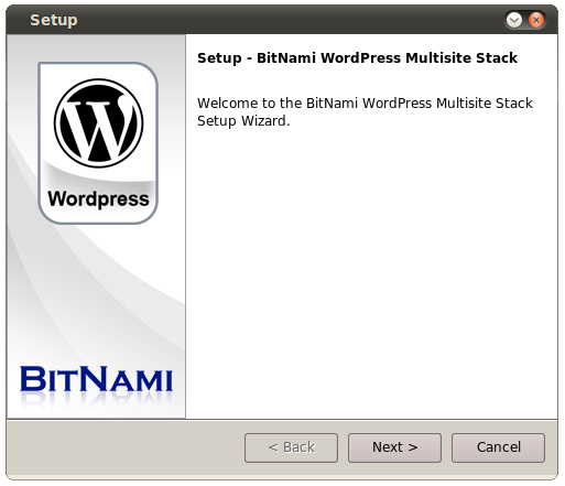 wordpress-multisite.png
