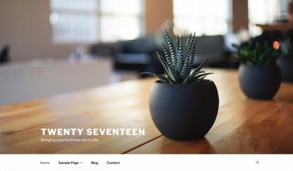 Twenty Seventeen Top Image